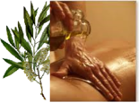 Tea-Tree-Zoete-Amandel-massage-olie