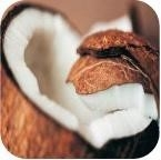 Kokos olie _
