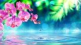Kant en klare Diffuser geurwater_