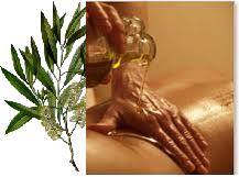 Tea Tree druivenpit massage olie